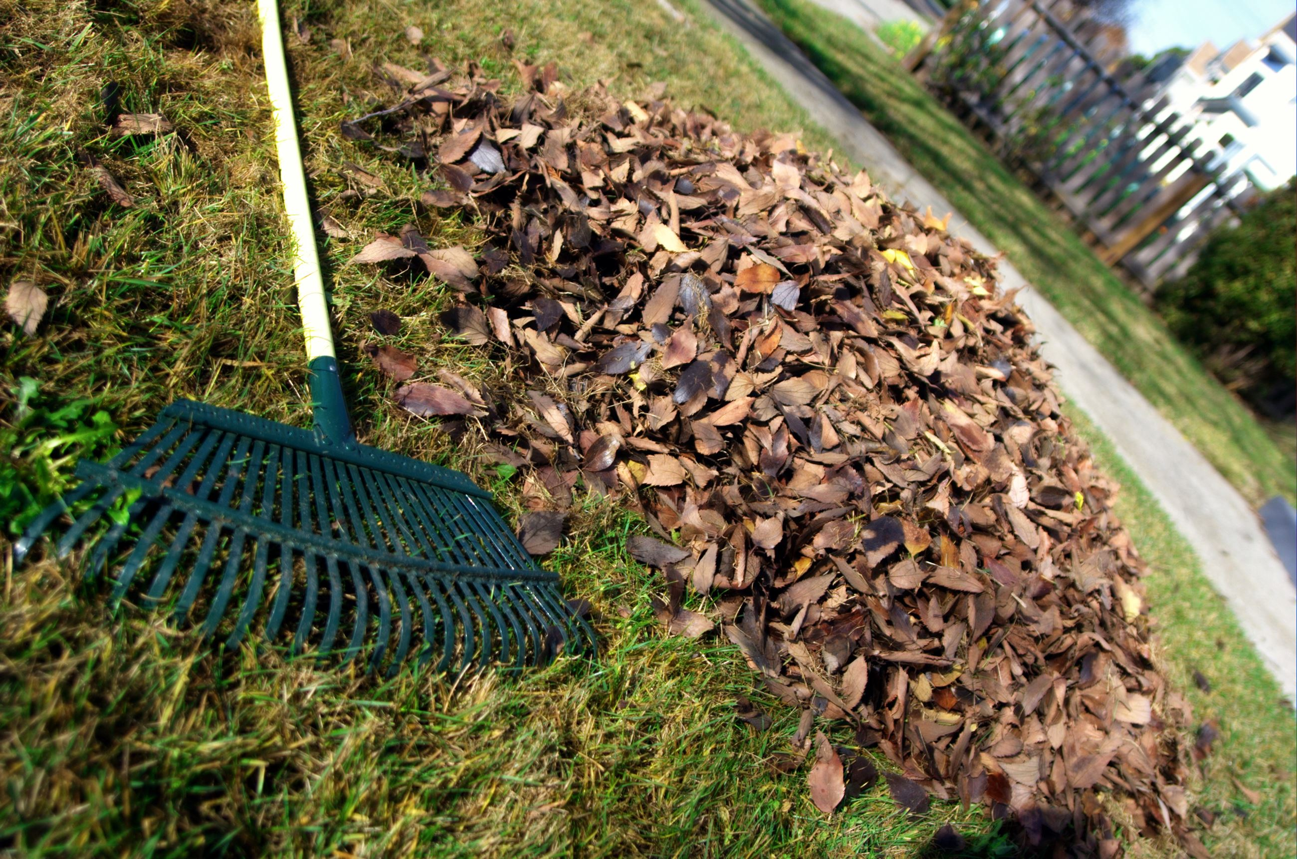 Yard waste image